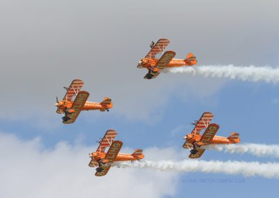 18 Wing Walkers-Margaret Waterson