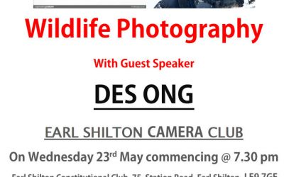 2018 Des Ong – Nature and wildlife photographer