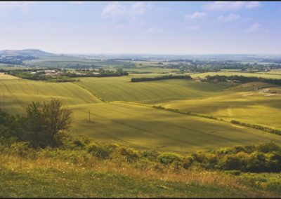 Dunstable Downs-Md Trigg