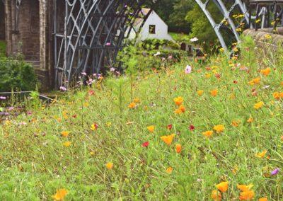 Iron Bridge In May-Geoff Whitelocks