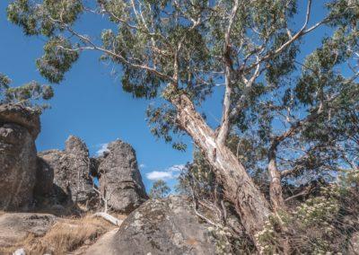 Hanging Rock-John Langham