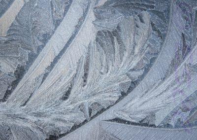Ice The Artist-Alan Wardropper