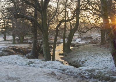 Sunrise In Winter-Trish Rudin