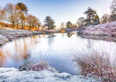 Winter At Bradgate-Rob Jones