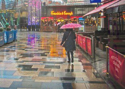 A Rainy Day-John Smith
