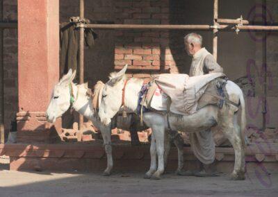 Indian Builders Transport-Roger Leck