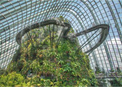 Singapore Cloud Forest-Peter Lawrance
