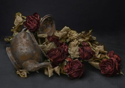 20 (6) 21.29 Floral Decay-Isobel Chesterman